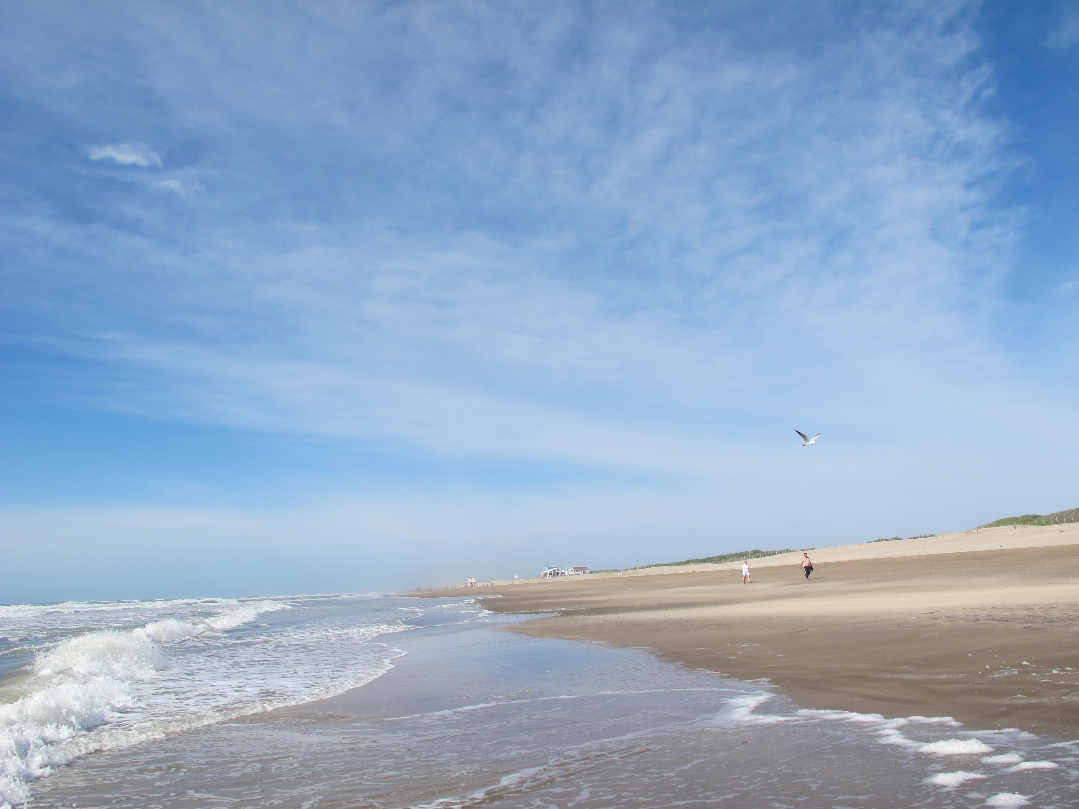 1 playa